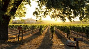 Escape to Wine Country 1